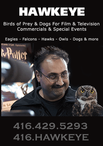 Animal Wrangling: Film-Industry